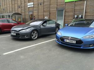 Nordland safari Tesla Owners Club Norway